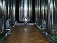 Olive oil Factory for sale