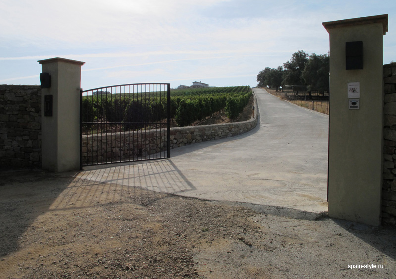 Vineyard and winery for sale in Malaga  , entrance