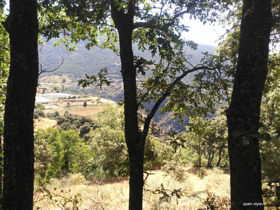 Oak forest, Country house with  7 ha land in the Sierra Nevada National Park