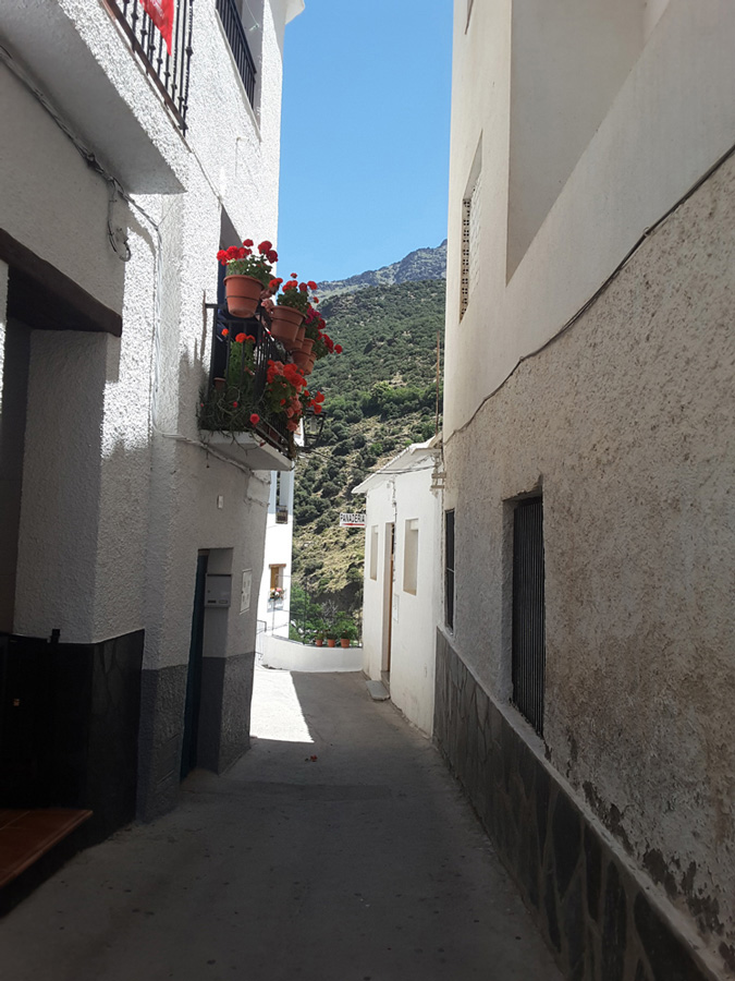 Street in Trevélez, Country house with  7 ha land in the Sierra Nevada National Park